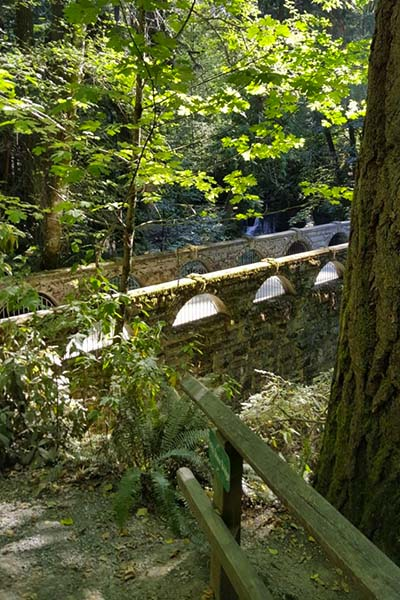 stone bridge in whatcom falls park