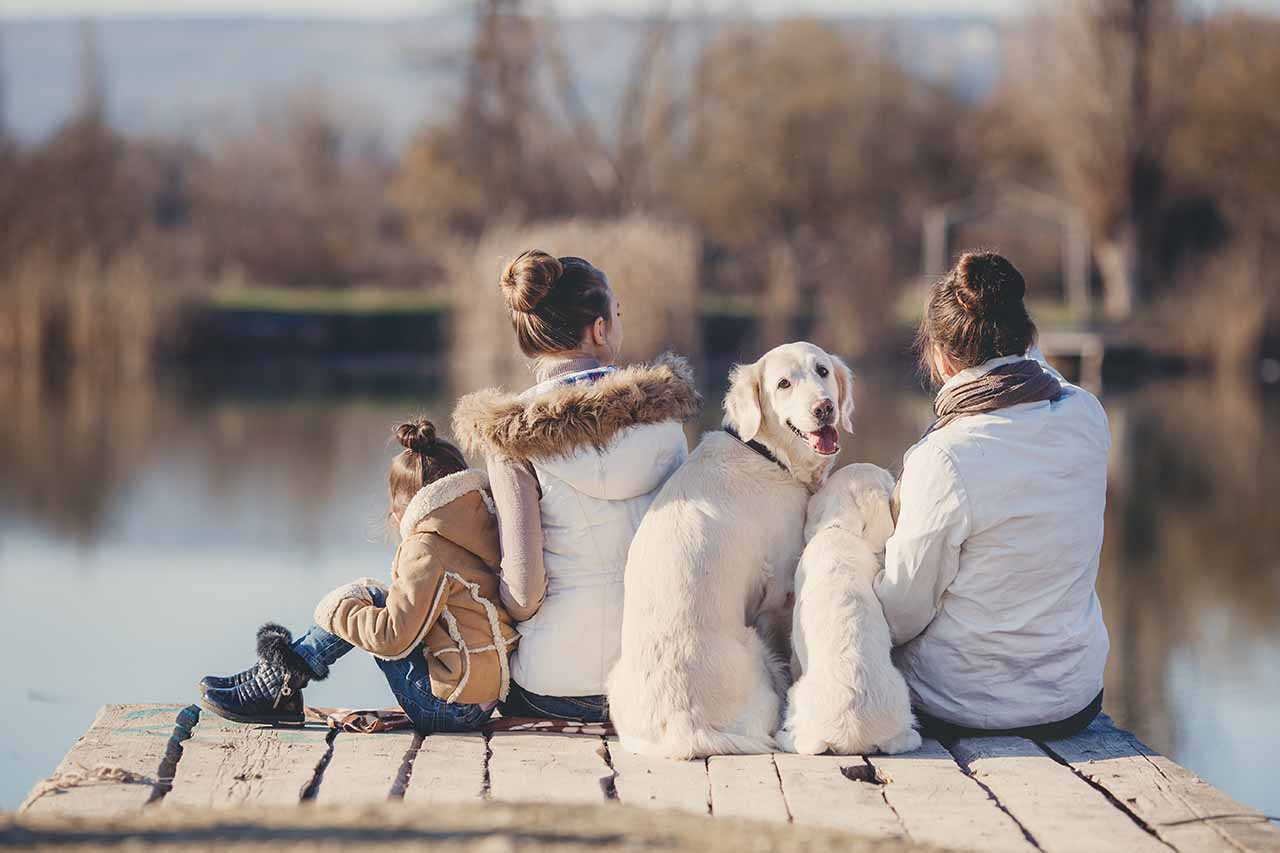 family with dogs near the lake